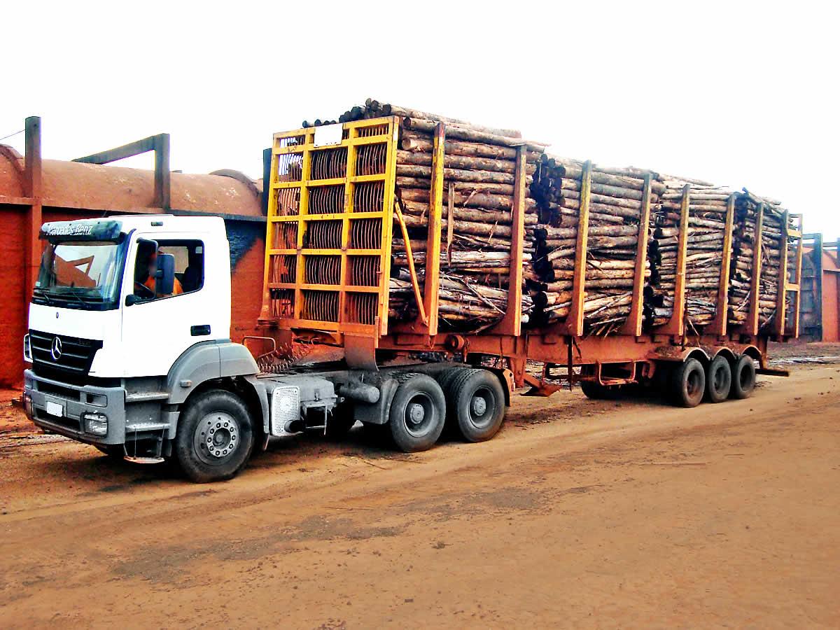 Especialistas em fornecimento de madeira de alta resistência